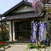 成金寺 観音堂